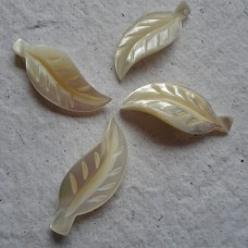 Mother of Pearl ~ Ivory Leaves