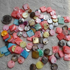Shell ~ Assorted Square and Rounds